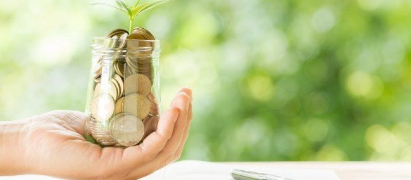 woman-hand-holding-plant-growing-from-coins-bottle_1150-17738