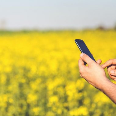 man-field-smartphone-yellow